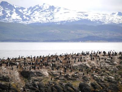 Ushuaia en una semana